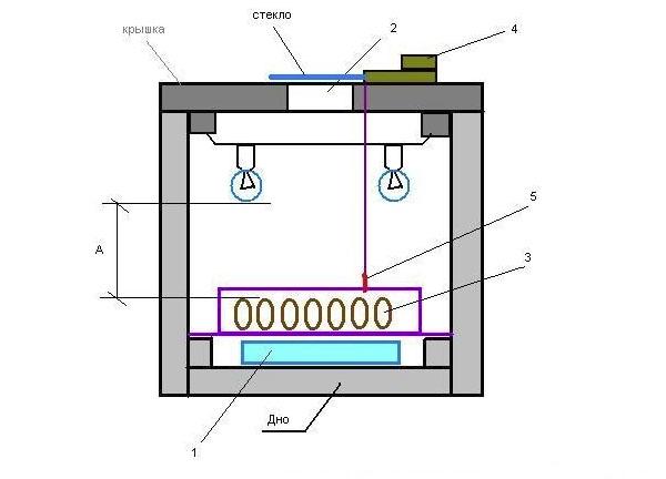 Схема инкубатора самодельного из пенопласта