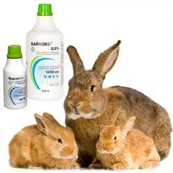 Байкокс для кроликов