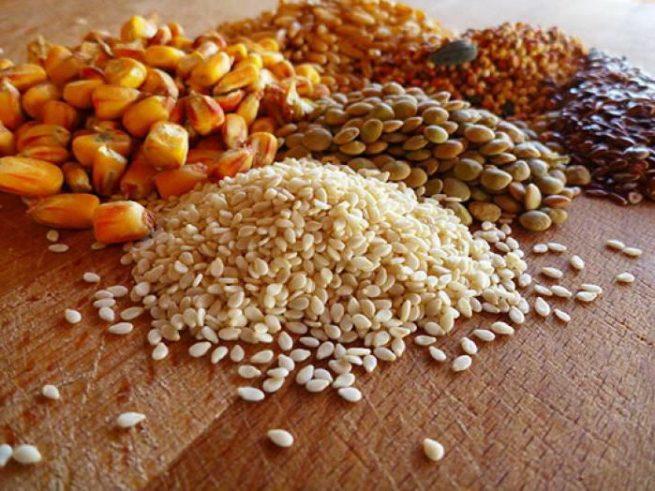 Зерновые культуры для кормления кур несушек
