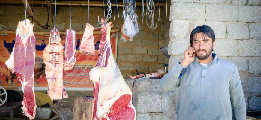 Бычки на мясо